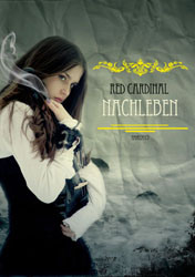 nanowrimo-2012-cover-2-kopie-22